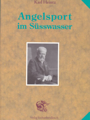 angelsport_cover